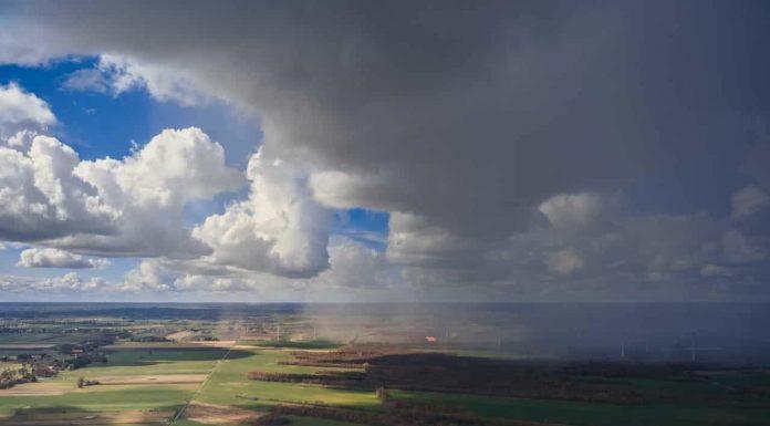 Illusztráció. (Kép: pexels.com)