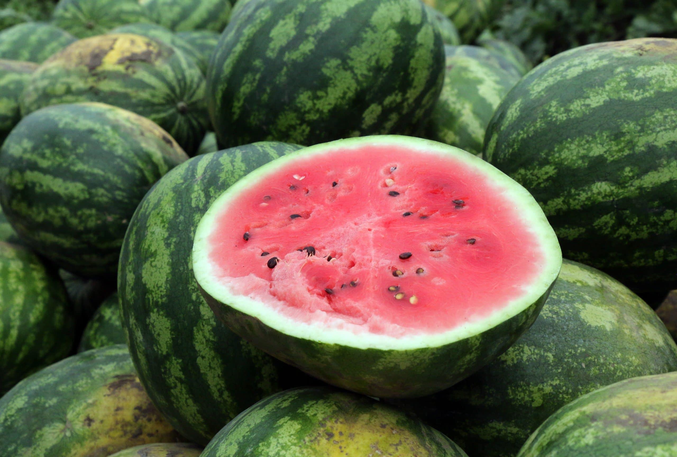 Budapest, 2020. július 16. Görögdinnye Jászapátiban 2020. július 16-án. Országszerte megkezdõdött a görögdinnye-szüret, idén átlagos mennyiséget, mintegy 160 ezer tonnát takaríthatnak be a termelõk. MTI/Vajda János